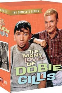 The Many Loves Of Dobie Gillis The Complete Series